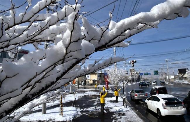 4月の雪 帯広空港で17センチ、帯広5センチ