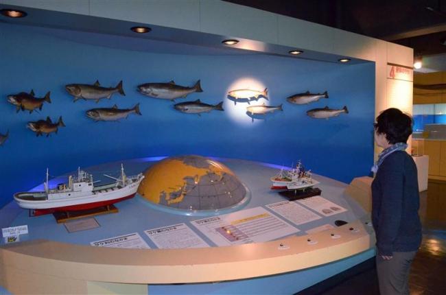 広尾町海洋博物がオープン