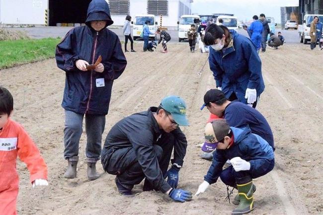児童ら野菜栽培に挑戦 池田