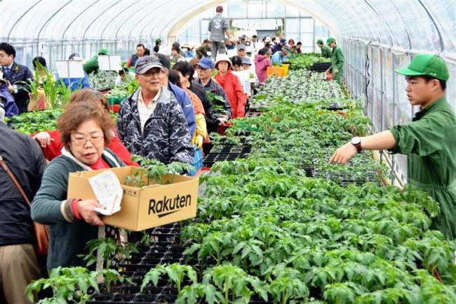 自慢の野菜苗に行列 更別農業高校