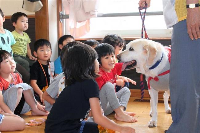 セラピー犬が歯磨き指導 音更・YMCA幼保園