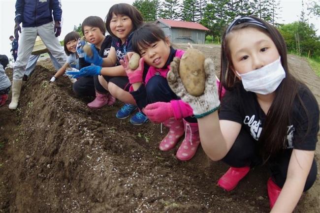 児童が農作物を植え付け 浦幌
