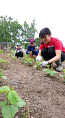 子どもたちの野菜作り進む 十勝ヒルズの「キッズトライ農園」 3