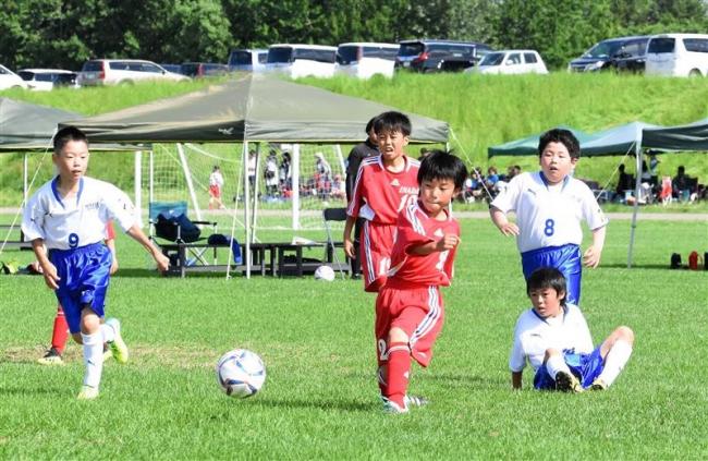 大空、稲田など7チームが北大会進出 少年サッカーU―10十勝予選