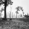 白馬にまたがる昭和天皇行幸の姿 帯広の安田さんが当時の写真残す