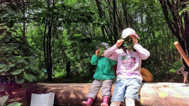 あしあとの森づくり進む 「緑の募金」支援も決定 ぷれいおん・とかち