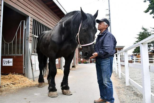 ばんえい十勝のPRばん馬「リッキー号」が今月末で引退