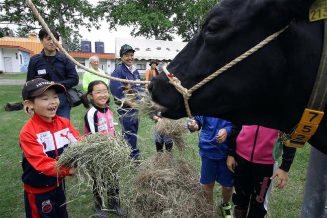 小学生が乳牛の生態を学 畜大ふれあい牧場