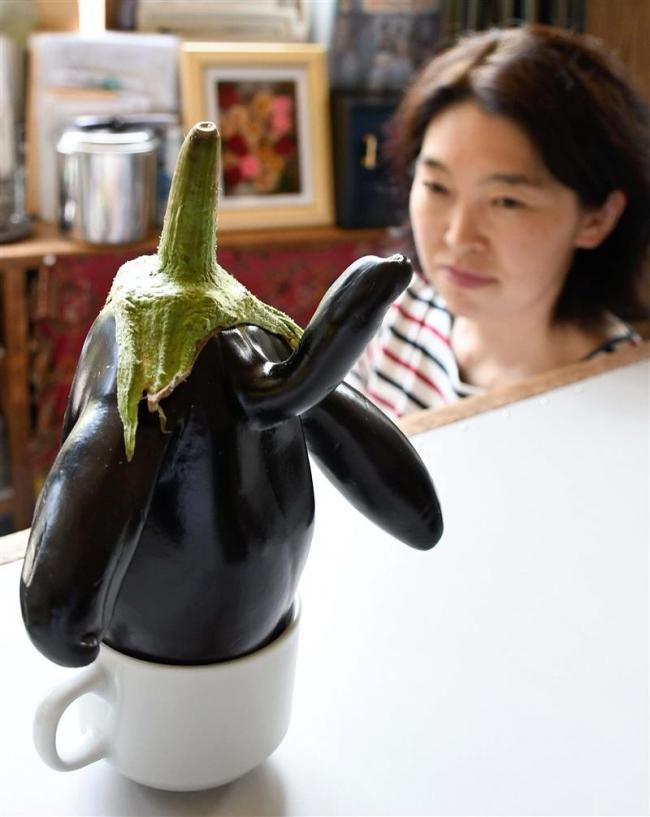 ペンギン形のナス、突然変異?のズッキーニ…「変わり者」の夏野菜が話題