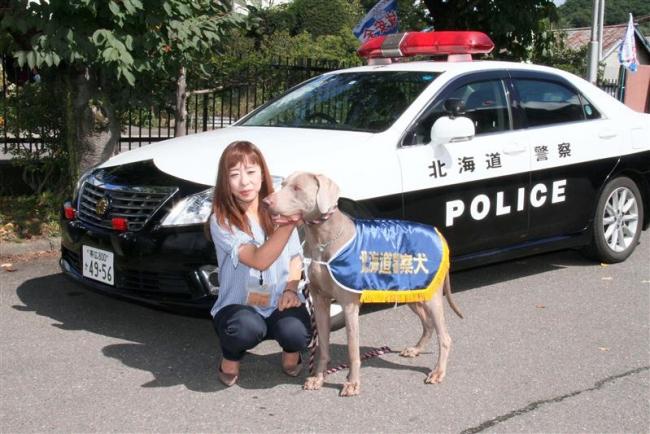 ドイツ犬種「ワイマラナー」が警察犬に 新得永田さんのリンキンパーク号