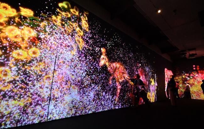 最新アート体験8万人 チームラボ展フィナーレへ 帯広美術館 1日まで