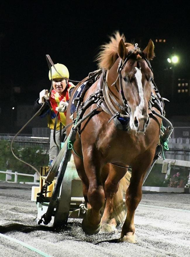 キタノユウジロウ重賞初制覇 ばんえいはまなす賞