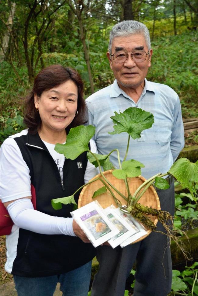 本ワサビの本格栽培に挑戦 たかはし養魚場 芽室