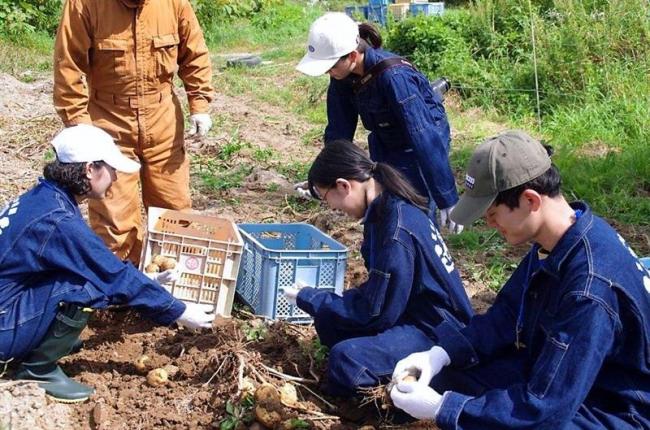 学生が町内合宿で「うらほろスタイル」に触れる 浦幌