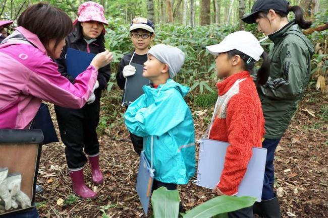 トムラウシの子どもたち森を学ぶ 新得