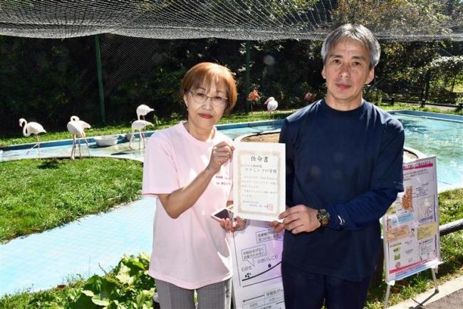 フラミンゴを「ピンクリボン大使」に任命 乳がん啓発に期待 帯広市