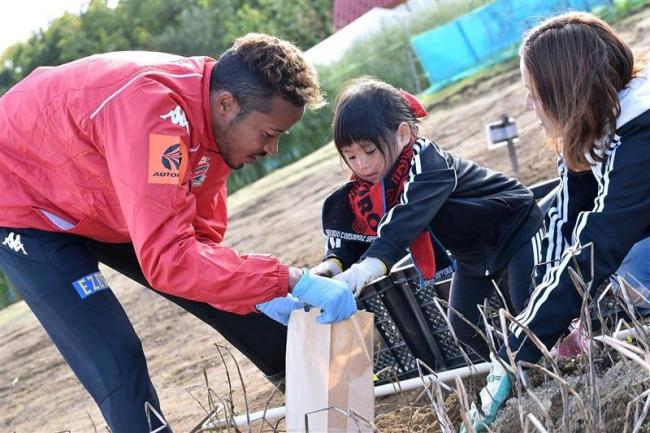コンサの選手とサポーターが収穫体験 北広島「くるるの杜」