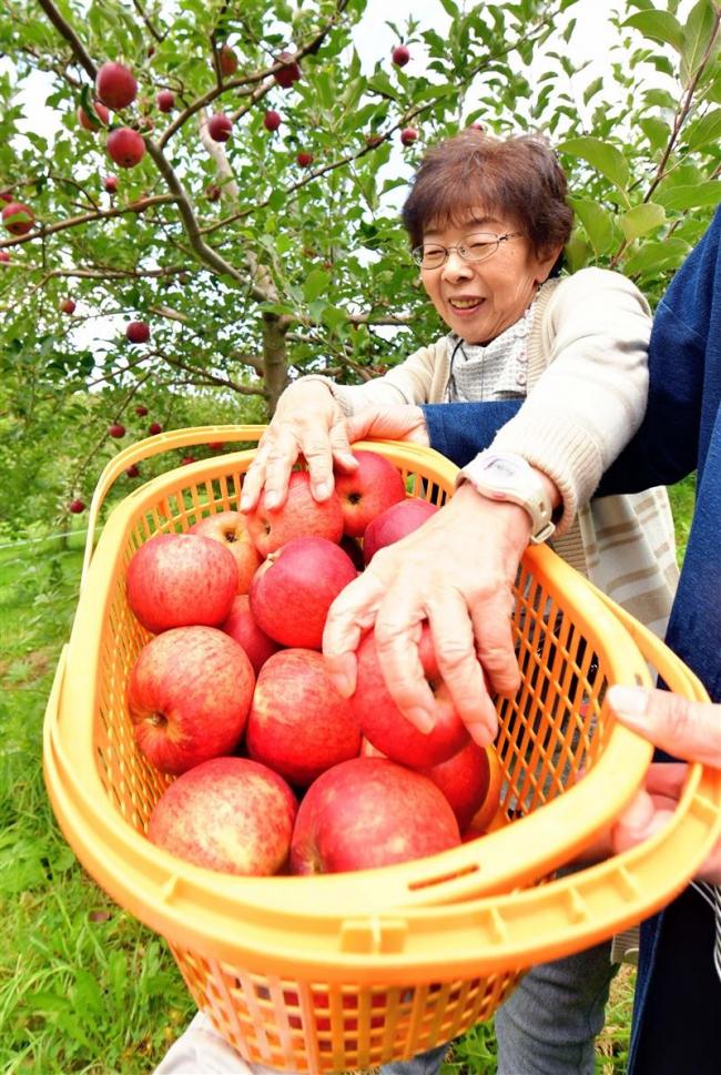 厳寒の十勝でなぜリンゴ栽培 松下リンゴの挑戦【電子版ジャーナル】