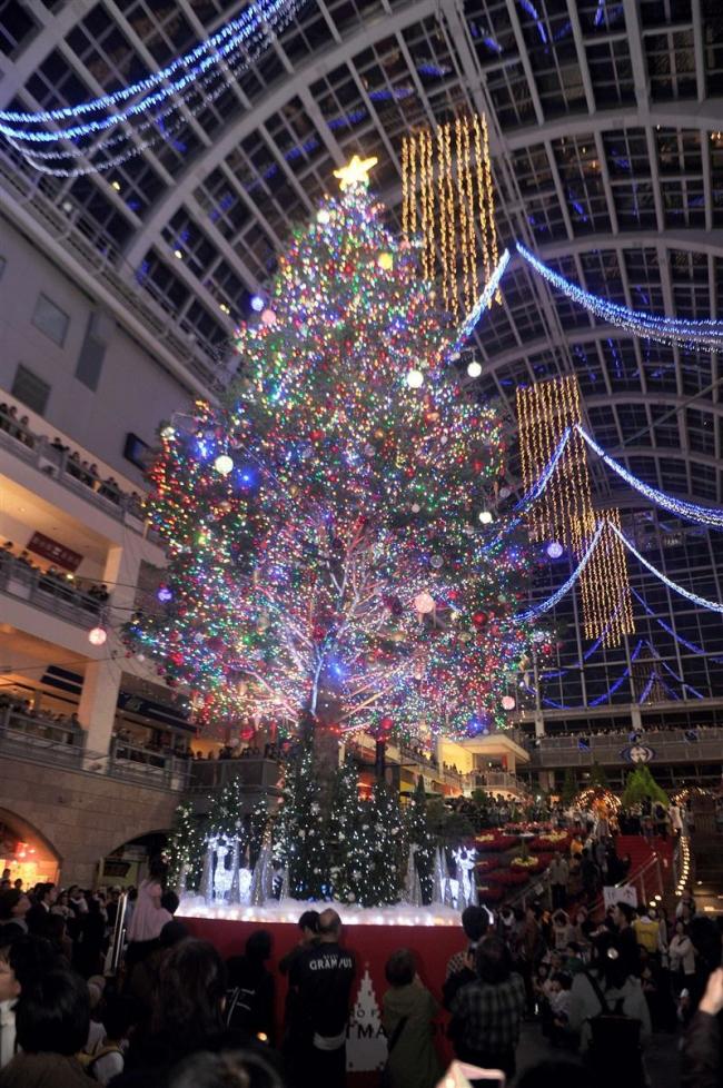 一足早くクリスマス気分 サッポロファクトリーで広尾のツリー点灯式