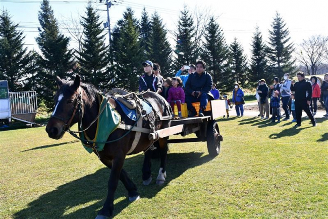 馬耕体験に子どもたち喜ぶ 今季最後の体験会