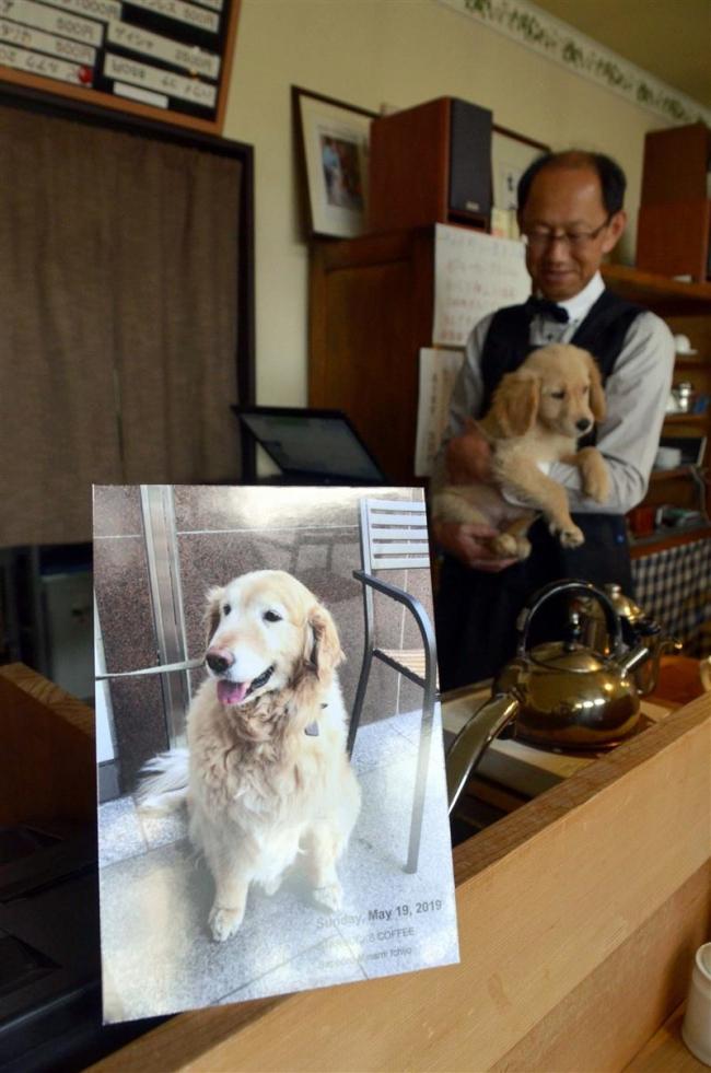 音更 木野珈琲の看板犬「モカ」が死去