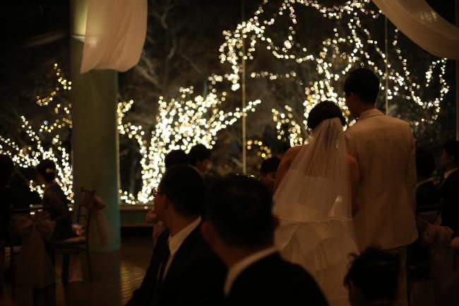 披露宴で点灯式 北海道ホテルのイルミネーション