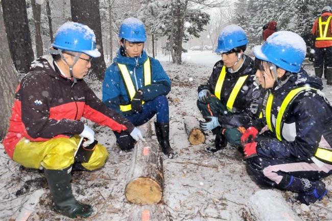 木材腐朽菌の研究 帯工高研究グループ