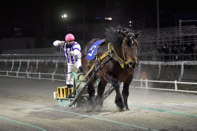 ホクショウマサルが30連勝 日本新記録 ばんえい競馬