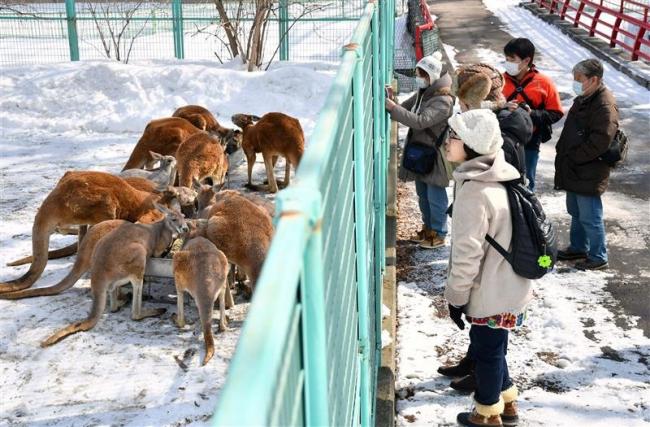 おびひろ動物園 冬季開園最終日