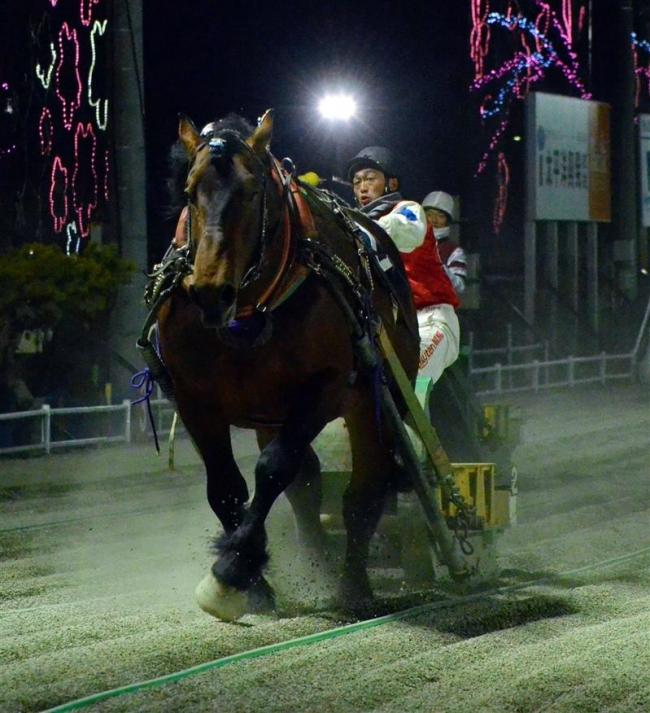 アオノブラック独走で重賞2勝目 ばんえいポプラ賞