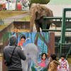 動物園のあるまち~ナナが残したもの(下)「老朽施設に一石投じ逝く」