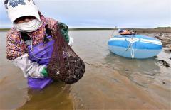シジミ漁をする漁業者(15日午前5時20分ごろ、大樹町生花苗沼で。金野和彦撮影)