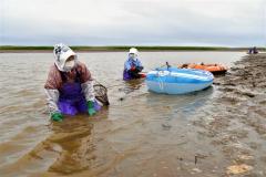 シジミ漁をする漁業者(15日午前5時15分分ごろ、大樹町生花苗沼で。金野和彦撮影)