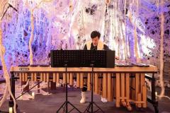 羊毛アートと立体音響で演出 幕別・十勝ヒルズ「紡がれる森」 3