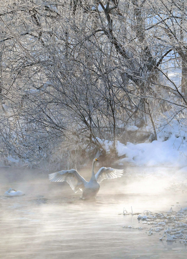 帯広3日連続で氷点下20度台 厳しい寒さ続く