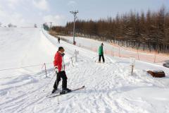 町営スキー場がオープ 鹿追 2