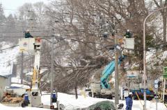 強風の影響で折れた電柱(右側)。奥の木が電線を巻き込んで倒れた(広尾町音調津、16日午後3時ごろ)