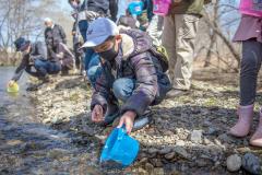 途別川にサケの稚魚を放流するスクール生