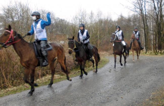 鹿追で乗馬の長距離耐久競技大会