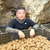 農に向き合う~農業経営部会会員紹介(1)「尾藤農産」