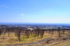 ヌプカの里から眺める十勝平野