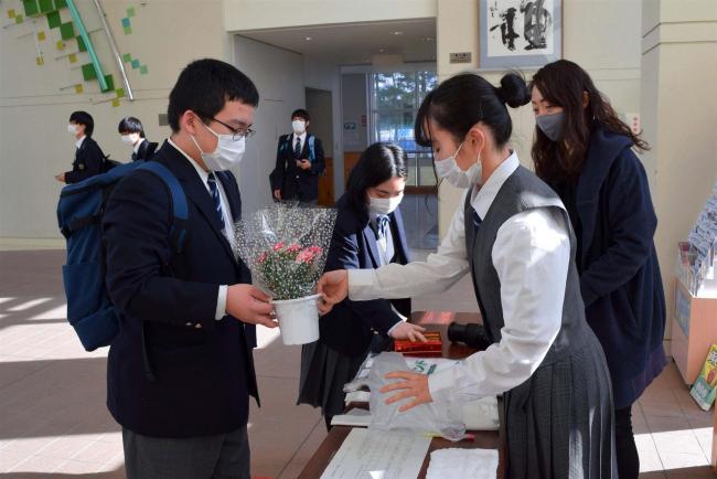 生徒が育てたカーネーションを学友に販売 音更高校