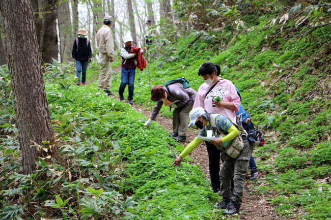 神社山で自然観察会 新得