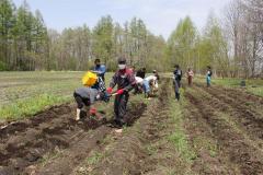 畑作業に汗を流す参加者ら