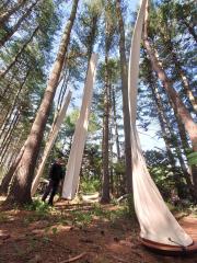 木々の中そびえ立つオブジェは見上げずにはいられない高さを誇る