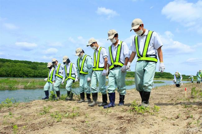 帯工高生、十勝川河川敷で種まき 再樹林化防止で草地復元図る