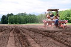 ソバの種まきが進む北新得農場(8日、午前10時ごろ)