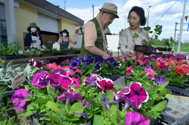 スタンド跡で花と野菜を販売 浦幌