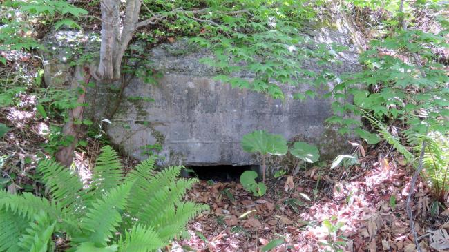 戦争遺跡のトーチカ 大樹町沿岸部で新たに3基確認