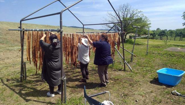 マクンベツアイヌ文化伝承保存会が織物アットゥシを製作へ 幕別